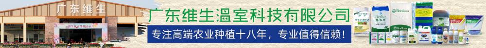 广东维生温室科技有限公司